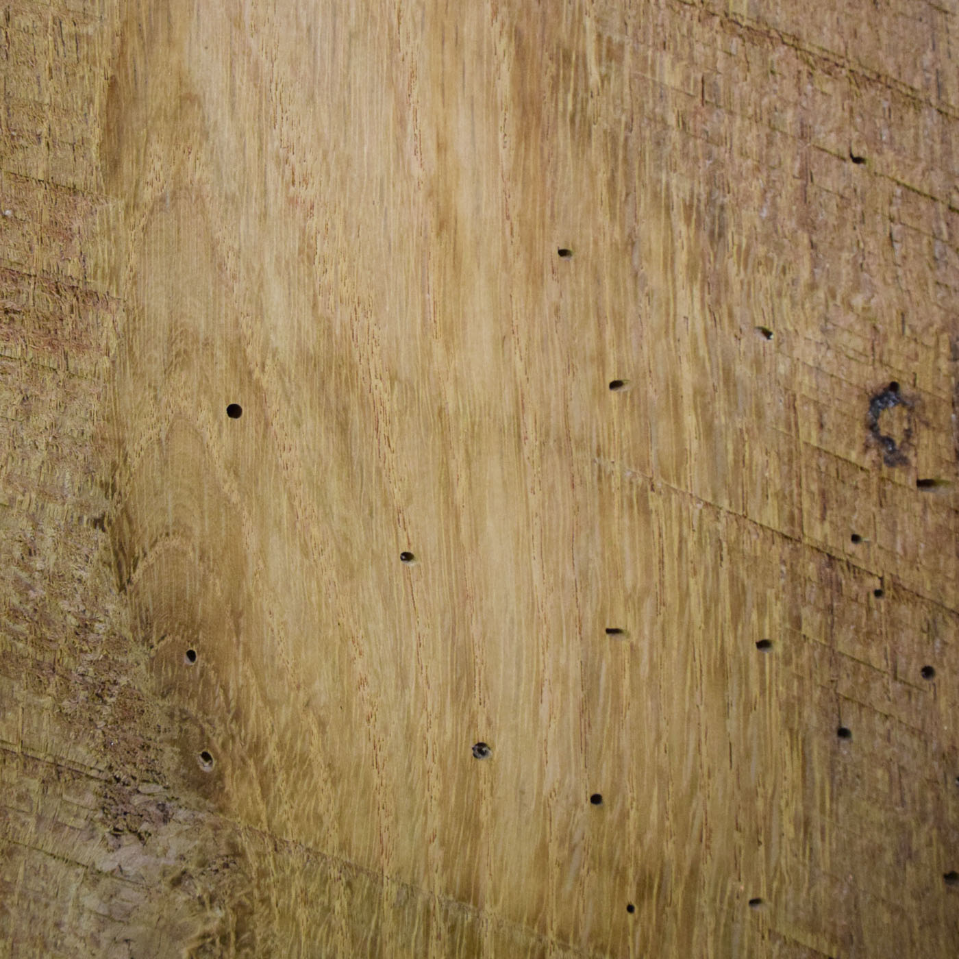 Reclaimed Oak Hit & Miss - Unfinished - Wellborn + Wright
