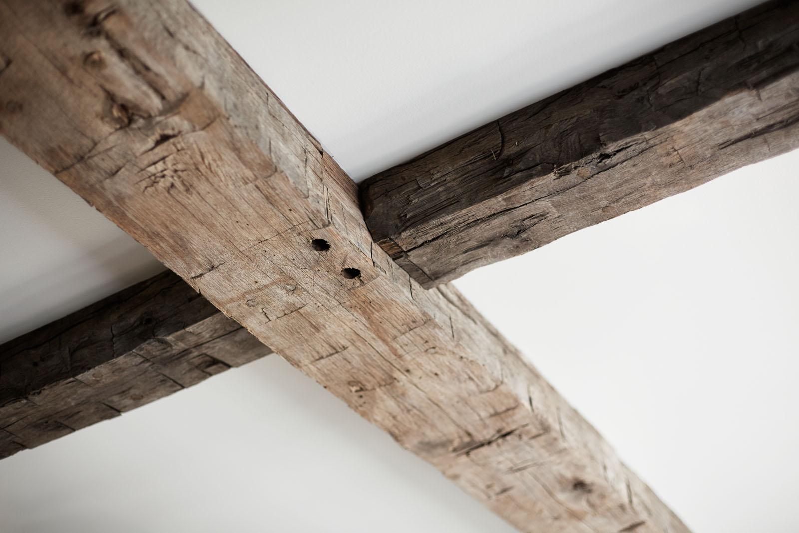 w+_Timbers